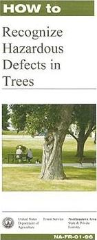 How to Recognize Harzardous Defects in Trees