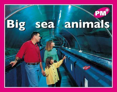 Big Sea Animals PM PLUS Magenta 2
