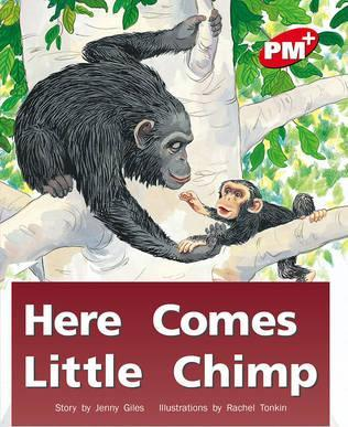 Here Comes Little Chimp PM PLUS Level 3 Red