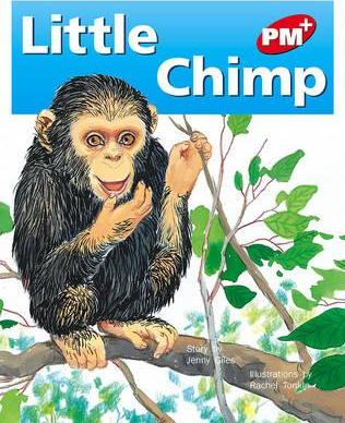 Little Chimp