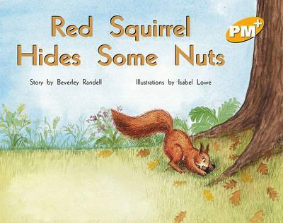 Red Squirrel Hides Some Nuts PM PLUS Level 7 Yellow