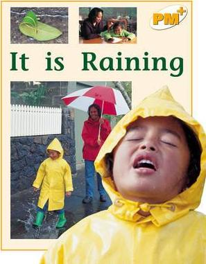 It is Raining PM PLUS Level 8&9 the Environment Non Fiction Yellow