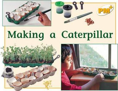 Making a Caterpillar PM PLUS Non Fiction Level 8 & 9 the Environment Yellow