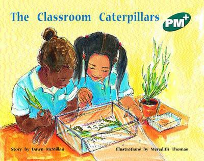 The Classroom Caterpillars PM PLUS Level 13 Green