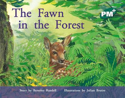 The Fawn in the Forest PM PLUS Level 14 Green