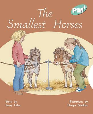 The Smallest Horses PM PLUS Level 17 Turquoise: Turquoise Level 17