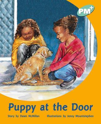 Puppy at the Door PM PLUS Level 18 Turquoise