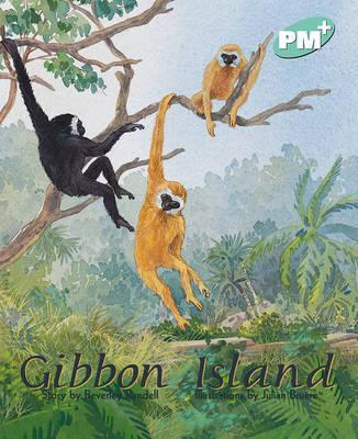 Gibbon Island PM PLUS Level 18 Turquoise
