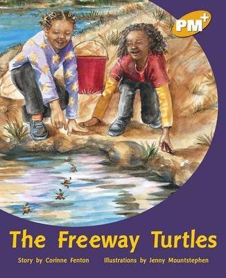 The Freeway Turtles PM PLUS Level 22 Gold