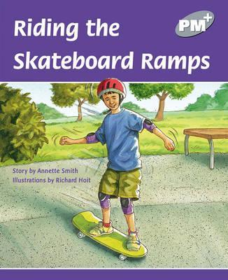 Riding the Skateboard Ramps PM PLUS Level 23 Silver