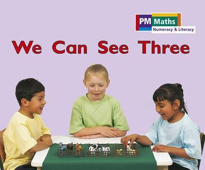 PM Maths Stage A We Can See Three