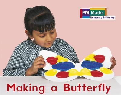 PM Maths Stage A Making a Butterfly
