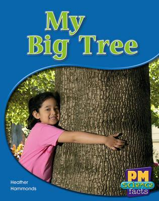 My Big Tree
