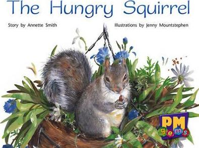 The Hungry Squirrel PM Gems Red Levels 3,4,5