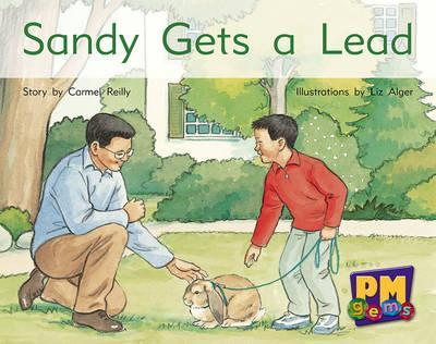 Sandy Gets a Lead