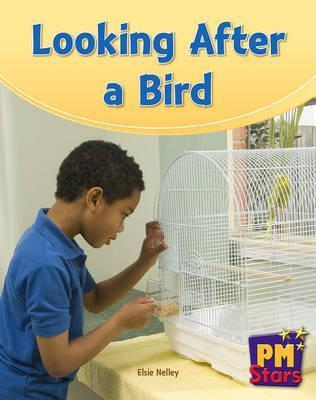 Looking After a Bird