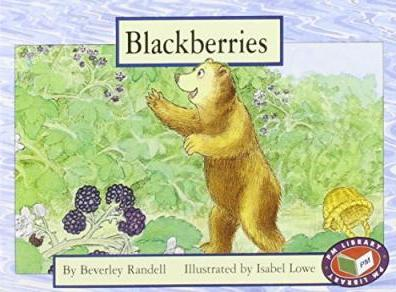 Blackberries PM Yellow Set 1 Level 6