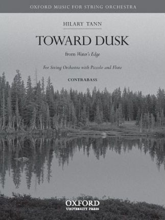 Toward Dusk: Double Bass