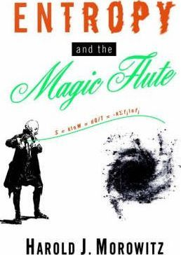 Entropy and the Magic Flute