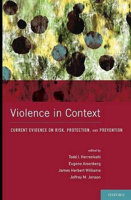Violence in Context