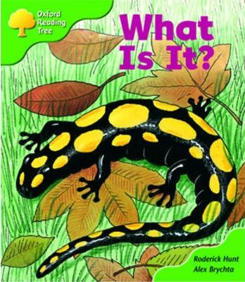 Oxford Reading Tree Stage 2 More Patterned Stories What is It? Pack A