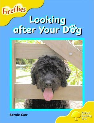 Oxford Reading Tree: Stage 5: Fireflies: Looking After Your Dog