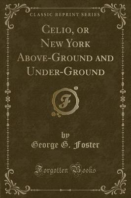 Celio, or New York Above-Ground and Under-Ground (Classic Reprint)