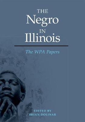 The Negro in Illinois