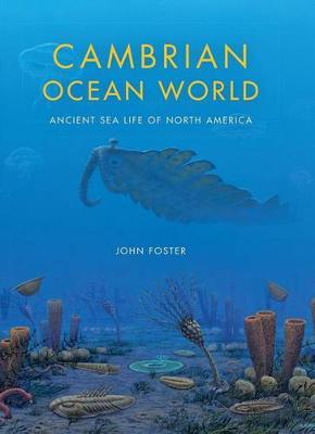 Cambrian Ocean World
