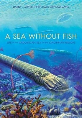 A Sea Without Fish a Sea Without Fish