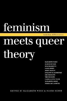 Feminism Meets Queer Theory