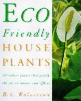 Eco-friendly Houseplants  50 Indoor Plants That Purify the Air in Houses and Offices
