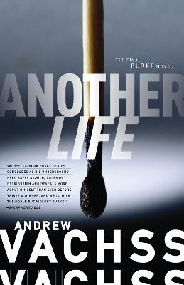 Another Life Cover Image