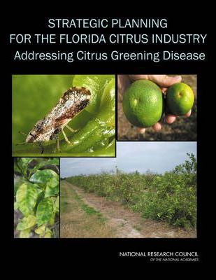 Strategic Planning for the Florida Citrus Industry
