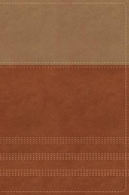NIV, Biblical Theology Study Bible, Leathersoft, Tan/Brown, Comfort Print