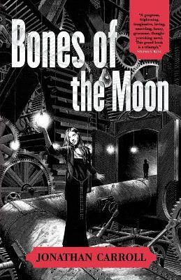 Bones of the Moon Cover Image