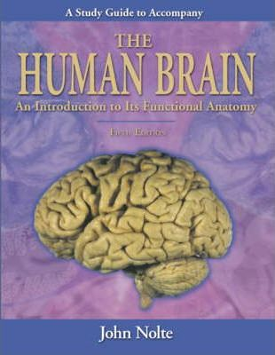 Study guide to accompany the human brain john nolte 9780323013215 study guide to accompany the human brain ccuart Image collections