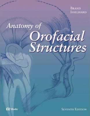 Anatomy of Orofacial Structures