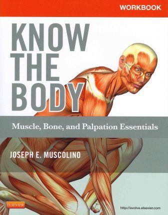 Workbook for Know the Body: Muscle, Bone, and Palpation Essentials : Muscle, Bone, and Palpation Essentials