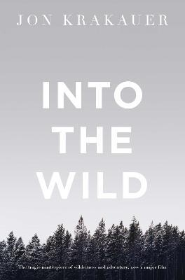 Image result for into the wild