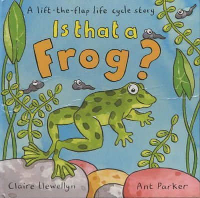 Is That A Frog? A Lift-The-Flap Lifecycle Story
