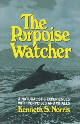The Porpoise Watcher