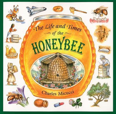 The Life and Times of a Honey Bee