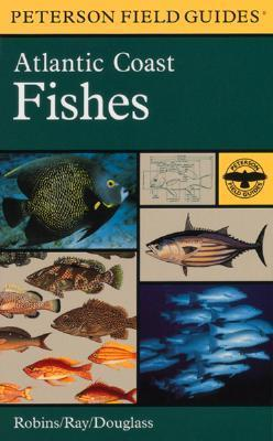 Field Guide to Atlantic Coast Fishes