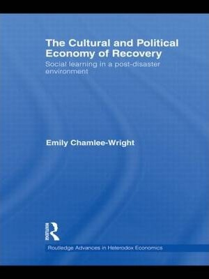 The Cultural and Political Economy of Recovery