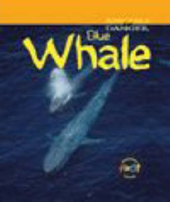 Animals Danger: Blue Whale Paperback