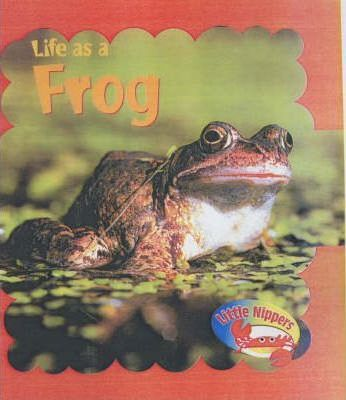 Little Nippers: Life as a Frog Hardback
