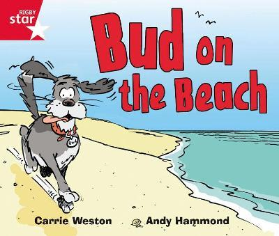 Rigby Star Guided Phonic Opportunity Readers Red: Bud On The Beach
