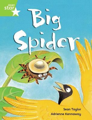 Rigby Star Guided Phonic Opportunity Readers Green: Big Spider Pupil Book (Single)
