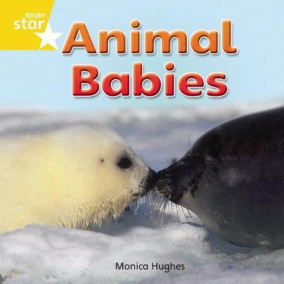 Rigby Star Independent Reception Yellow Non Fiction: Animal Babies Single